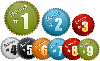 Internet Marketing Web Graphics Pack - Bonus Icons